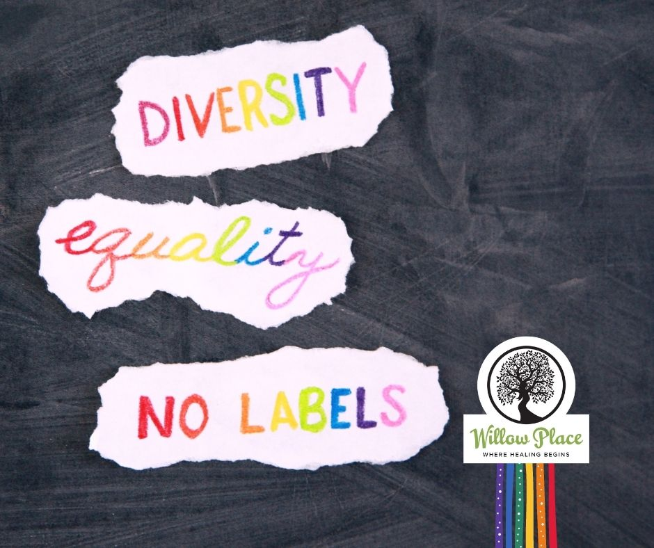 rainbow image with text: diversity, equality, pride and Willow Place logo
